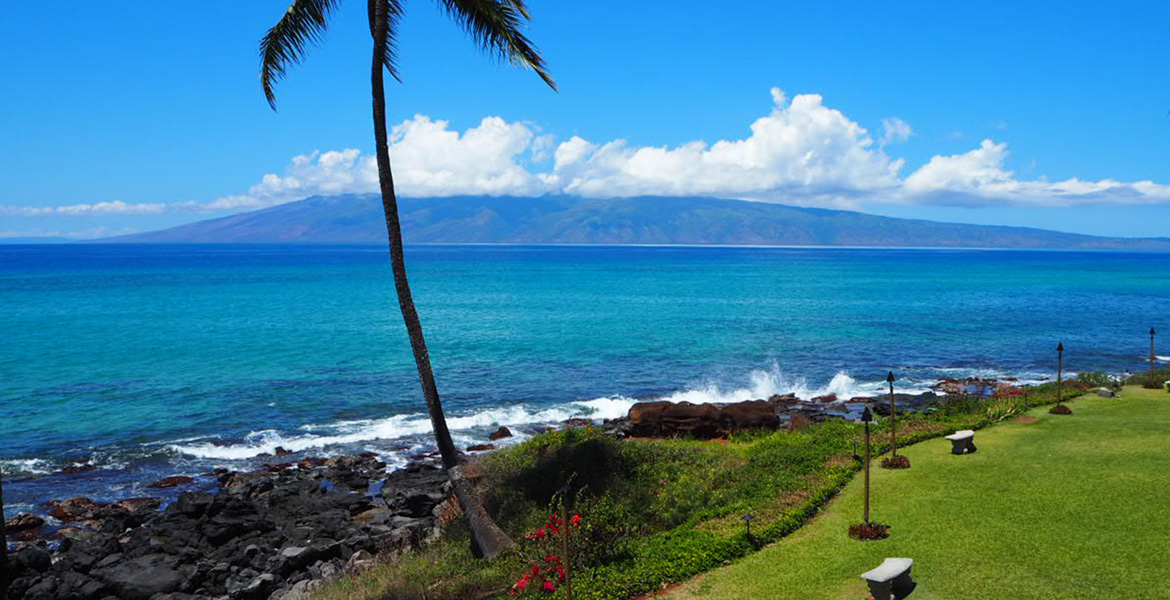 Sunset Shores Maui Banner